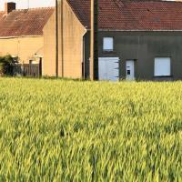Grande maison à rénover à la campagne